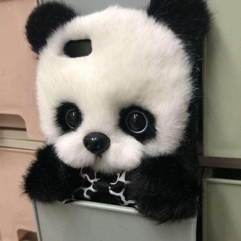iphone panda